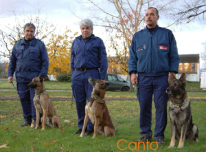 Diensthund Canto
